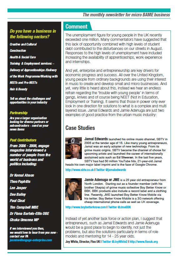 newsletter_jan2012_p3.png